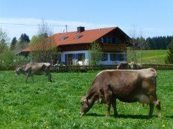 Landhaus Klöck