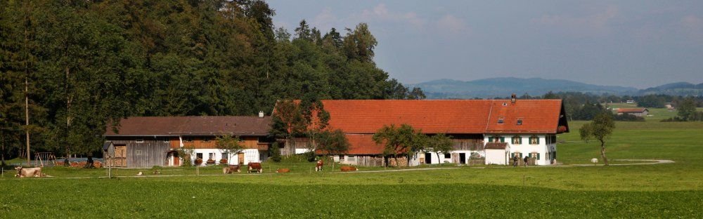 Höllensteinhof