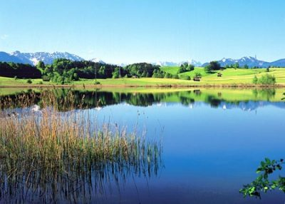 froschsee
