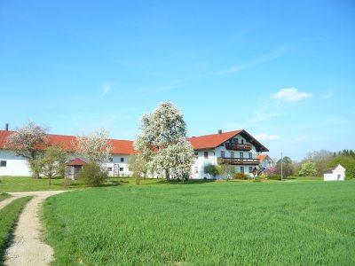 Ferienhof Steinberger