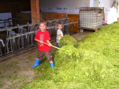 Unsere Ferienkinder helfen beim Füttern