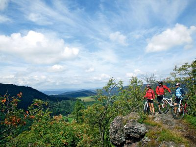 Mountainbiketour im Thringer Wald (&copy; Thringer Tourismus GmbH : Lars Schneider )