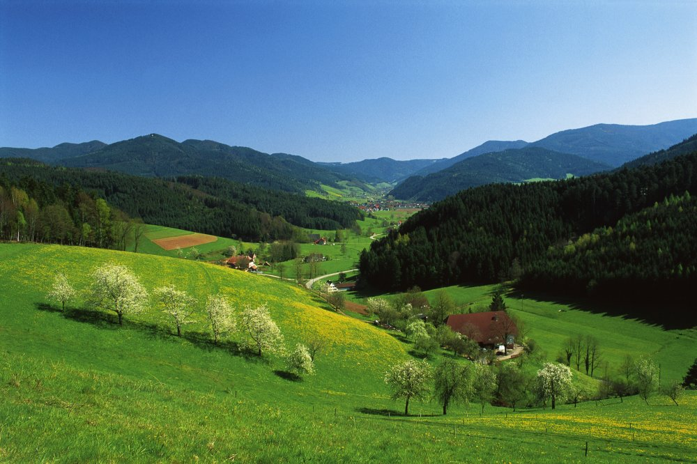 Frhjahr im ZweiTlerLand im Schwarzwald (&copy; ZweiTlerLand Tourismus )