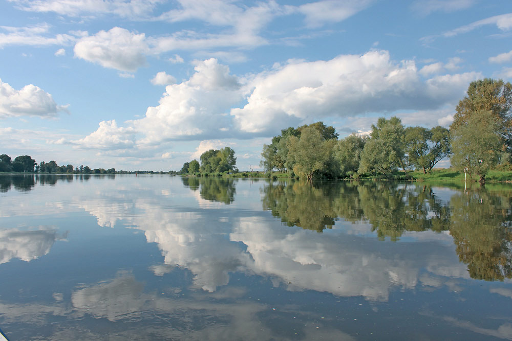Sommer an einem See in Brandenburg. (© BARTHEL + BARTHEL GbR : BARTHEL + BARTHEL GbR )