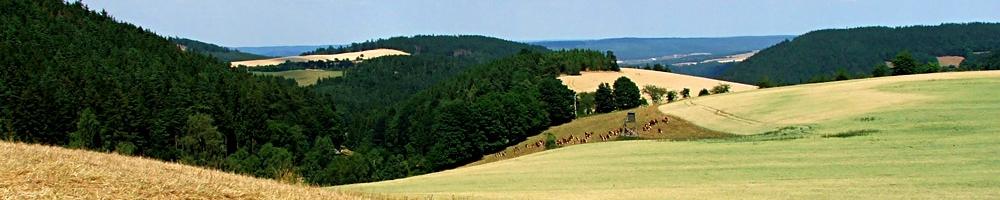 Landschaft bei Lositz (© LAG Thüringen )