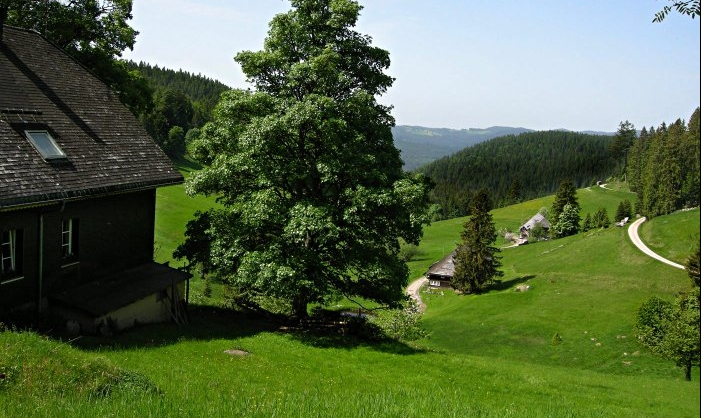 hotzenwald_ausschnitt_701x418