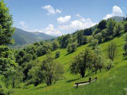 Thüringer Wald & Rhön