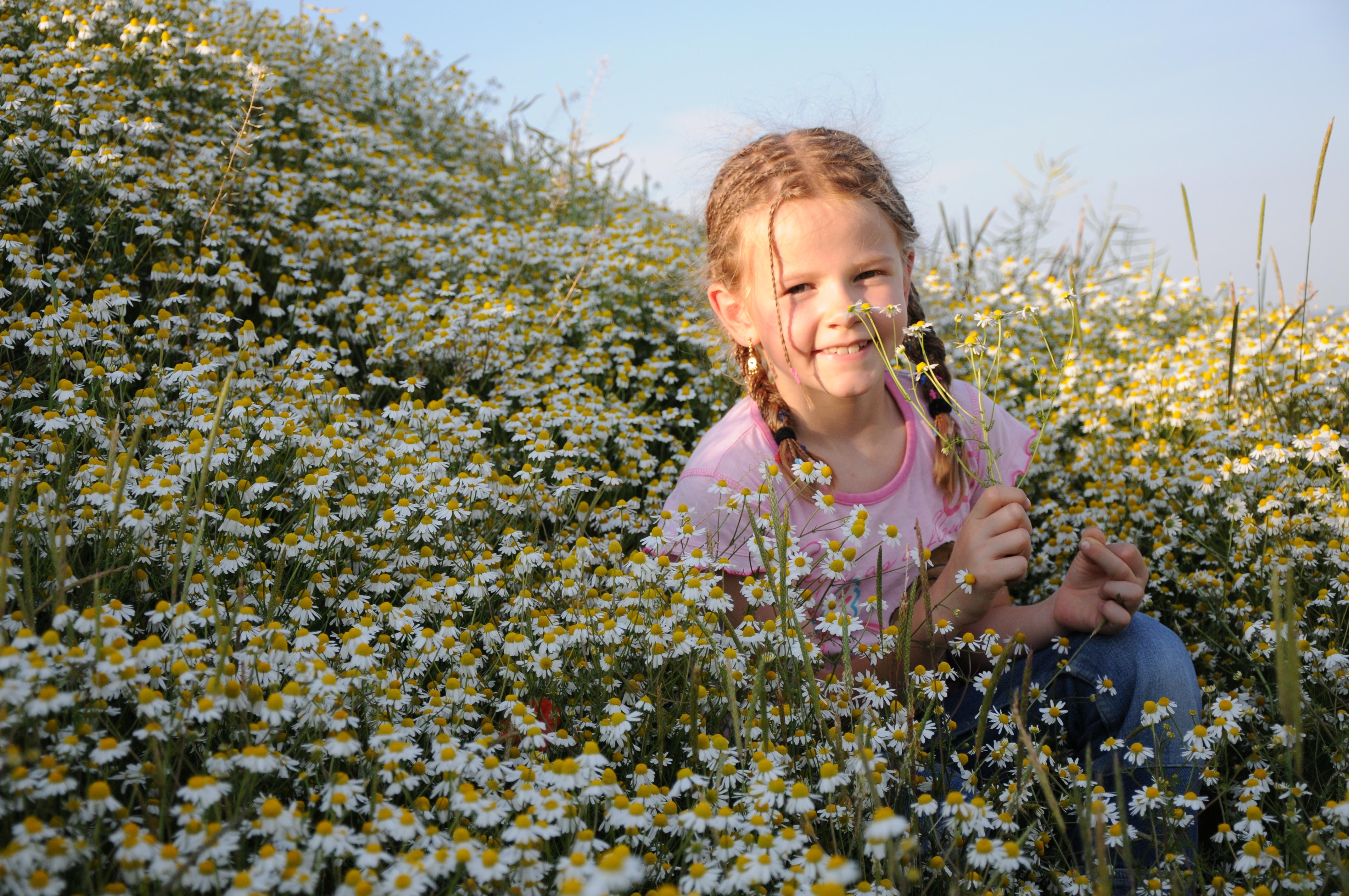 Lilly im Kamillenfeld