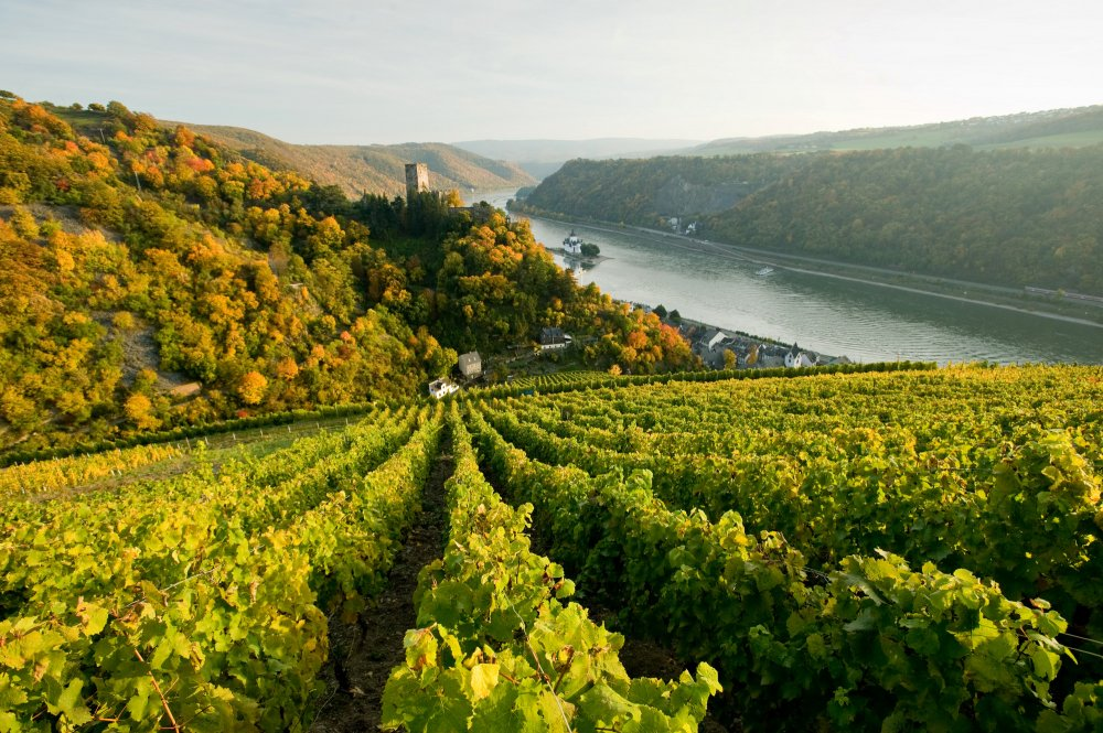 Schnburg Oberwesel (&copy; LAG RP : Rheinland-Pfalz Touristik )