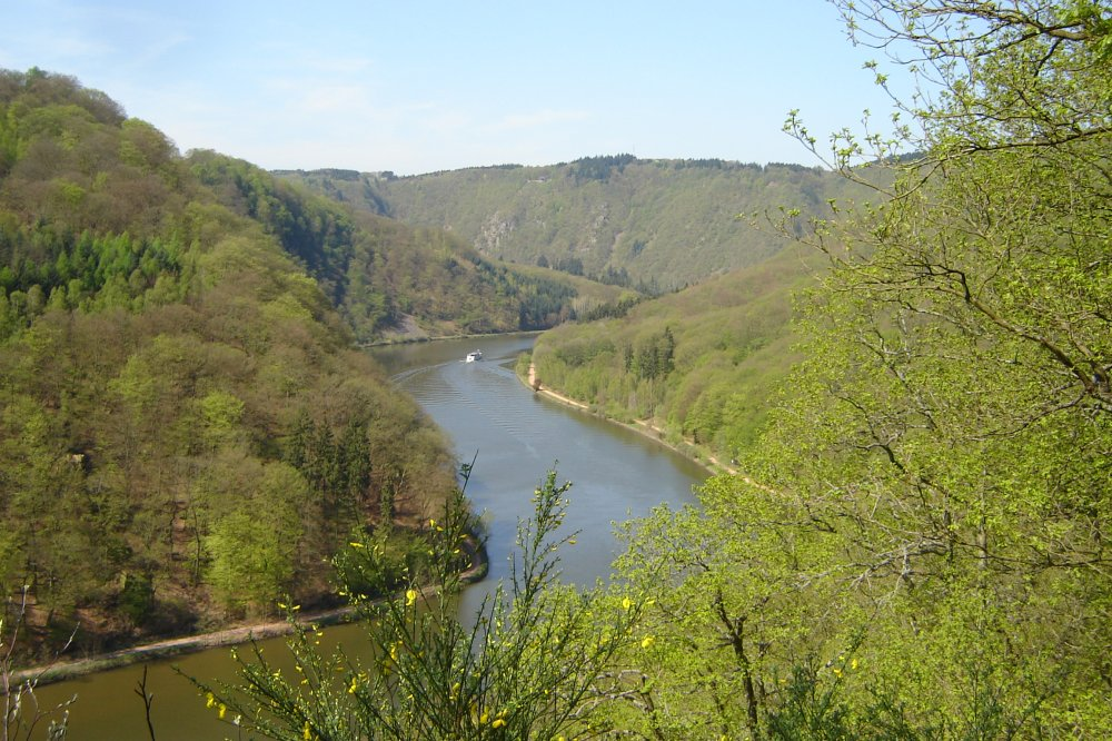 Saar vom Saar-Hunsrck Steig (&copy; LAG RP : Rheinland-Pfalz Touristik )