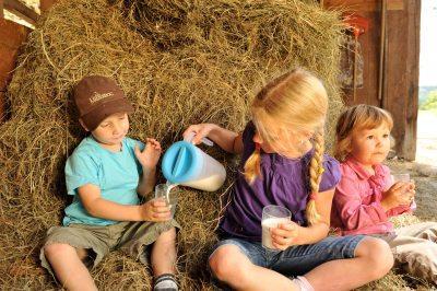 Frische-Milch-direkt-beim-Bauern (© Susanne Mölle )
