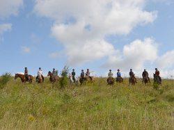 Geländeausritt Gel�ndeausritt von Kindern mit Pferden