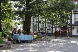 Ferienhof Köhne im Schmallenberger Sauerland