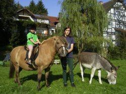 Ponyreiten für Kinder kostenlos