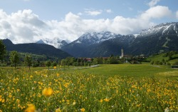 Frühlingslandschaft Saftige Blumenwiesen und schneebedeckte Gipfel - das ist ein Frühling wie man ihn sich nur wünschen kann. Hier im Pfrontener Tal erfüllen wir diesen Wunsch.