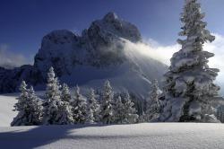 Aggenstein im Wintermantel Der Gipfel des Aggensteins ragt aus dem glitzernden Pulverschnee hervor.