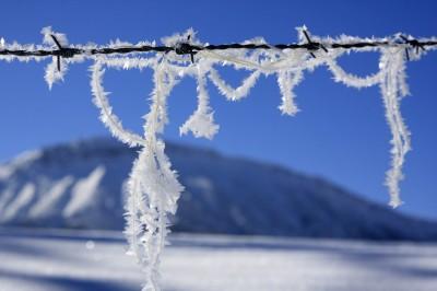 Stacheldraht mit Schneekristallen (© Pfronten Tourismus/ E. Reiter : Pfronten Tourismus/ E. Reiter )