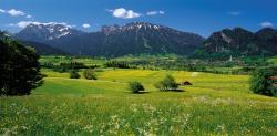 Talsicht im Mai Sicht auf das Pfrontener Tal im Mai