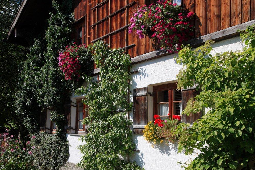 Ortsbild (© Pfronten Tourismus/ E. Reiter : Pfronten Tourismus/ E. Reiter )