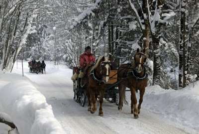 Fahrt im Pferdeschlitten (© Pfronten Tourismus/ E. Reiter : Pfronten Tourismus/ E. Reiter )