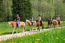 Hoch zu Ross genießen Sie das Pfrontener Tal auf dem Rücken der Pferde