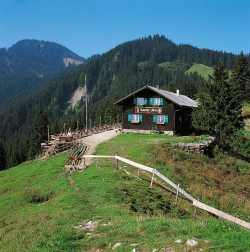 Kappeler Alp Schöne Berghütte auf dem Edelsberg. Erreichbar über Pfronten Kappel, Pfronten Röfleuten über Gundhütte oder ab Nesselwang Alpspitzbahn.