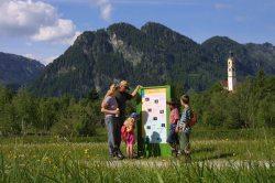 Lehrpfade rund um Pfronten Fünf Natur- Erleben-Pfade ermöglichen Ihnen Wandergenuss und Wissenswertes zu Natur und Kultur zugleich.