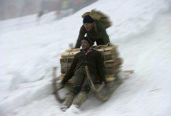 Schalenggen Rennen Traditionelles H�rnerschlittenrennen in Pfronten Kappel am Faschingssamstag