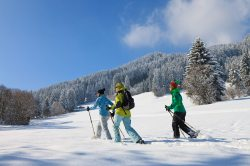 Schneeschuhwandern durch das winterliche Allgäu