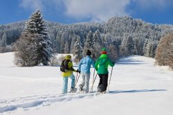 Schneeschuhwandern in Pfronten