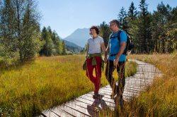 Wandern und Spazierengehen