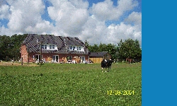 Ferienhof Landfrieden Vollerwiek