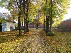 Herbstallee auf dem Ferienhof Albert