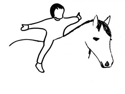 Ponyhof Tummetott