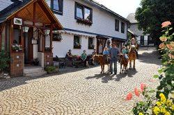 Pony- und Bauernhof Hessel