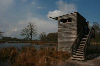 De Wittsee Aussichtsplattform