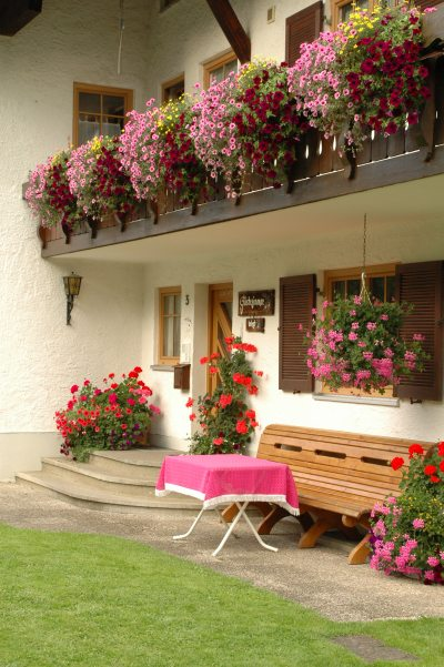 2008-07-27hausbilder029