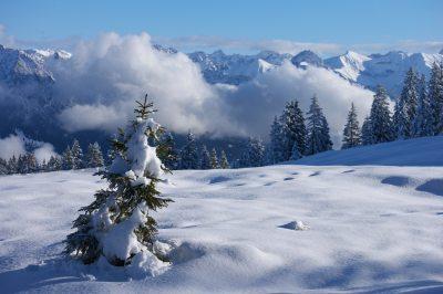 Winterwanderung2015