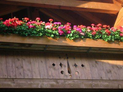 Landhaus auf dem Buck Balkon
