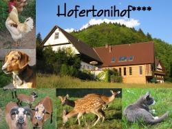 Hofertonihof