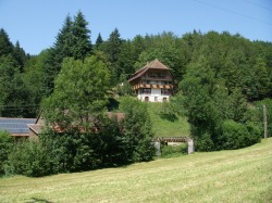 Blick auf d. Ferienhaus Gallushof