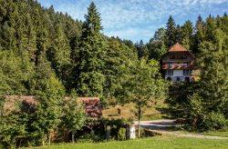 Gallushof - Ferienhaus
