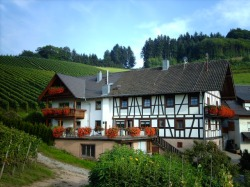 Dilgerhof in Oberkirch-Bottenau
