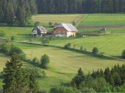 hofbilder2008034