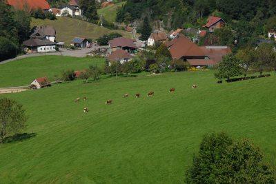 Unser Bauernhof aus der Vogelperspektive