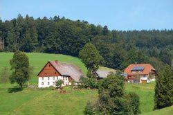Baschijörgenhof - dein Urlaub auf dem Bauernhof