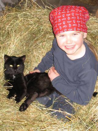 Bauernhofurlaub mit Katze
