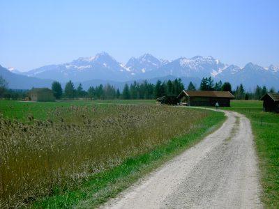 Radweg am Bannwaldsee