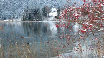 Novembertag am Weissensee