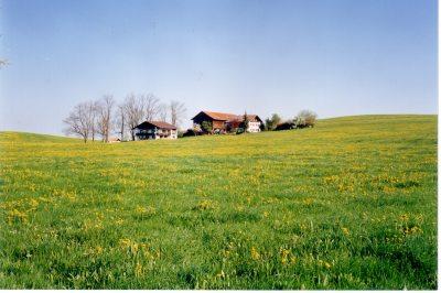Mayerhof mit Gästehaus